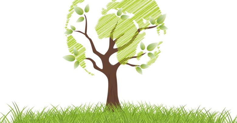Истории: блокчейн поможет вырастить 10,000 деревьев в Индии